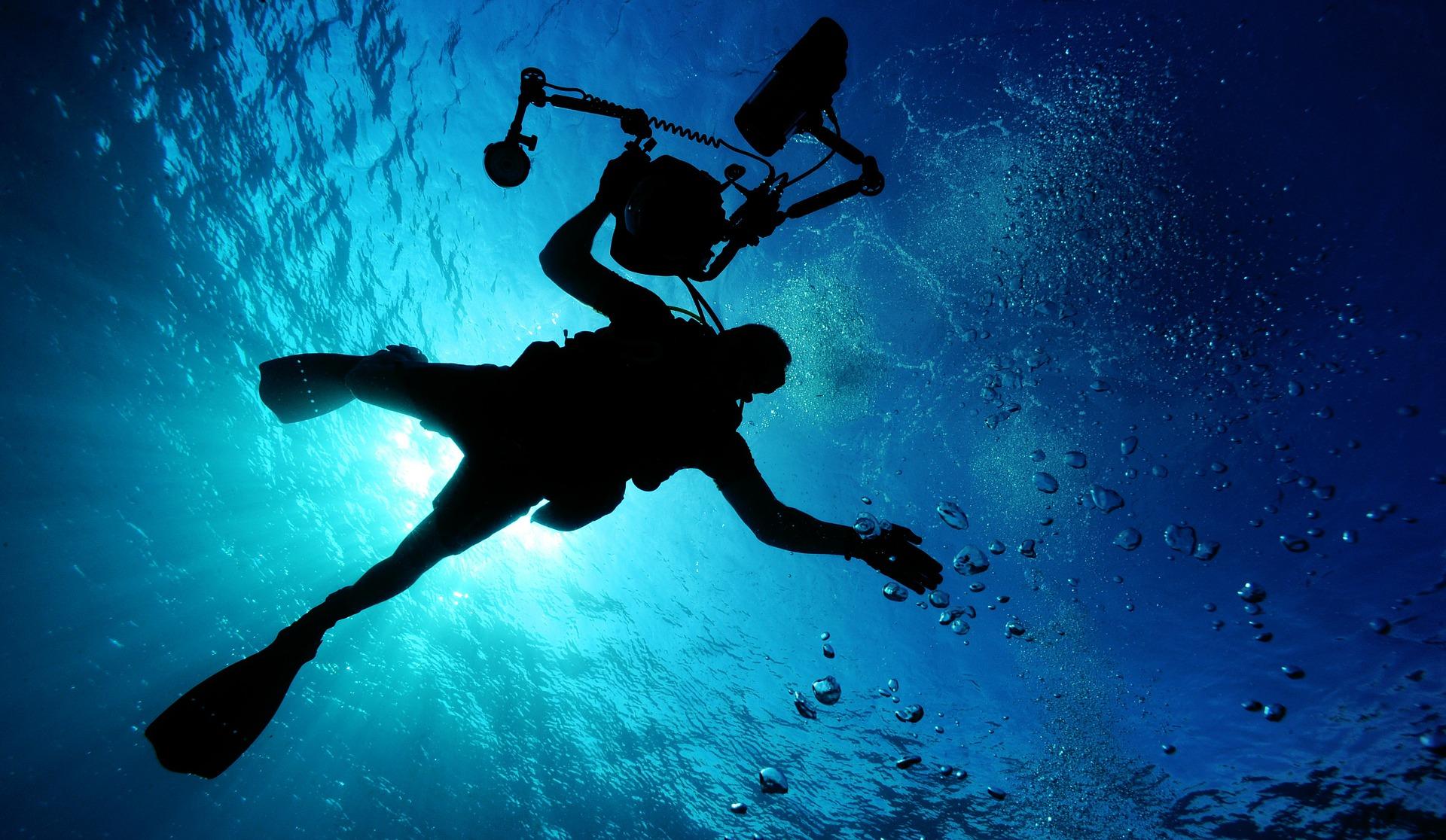 dykker set nedefra i havet