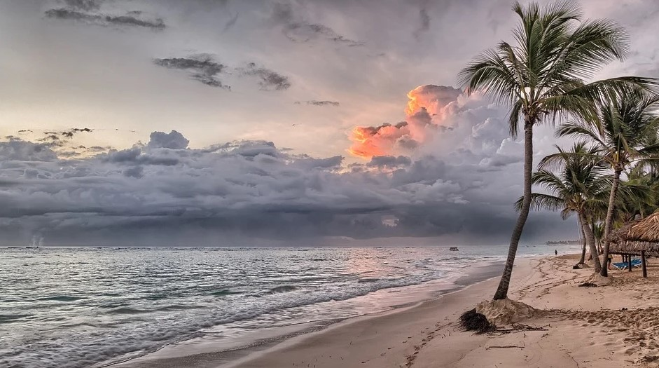 palme_strand_grå_himmel