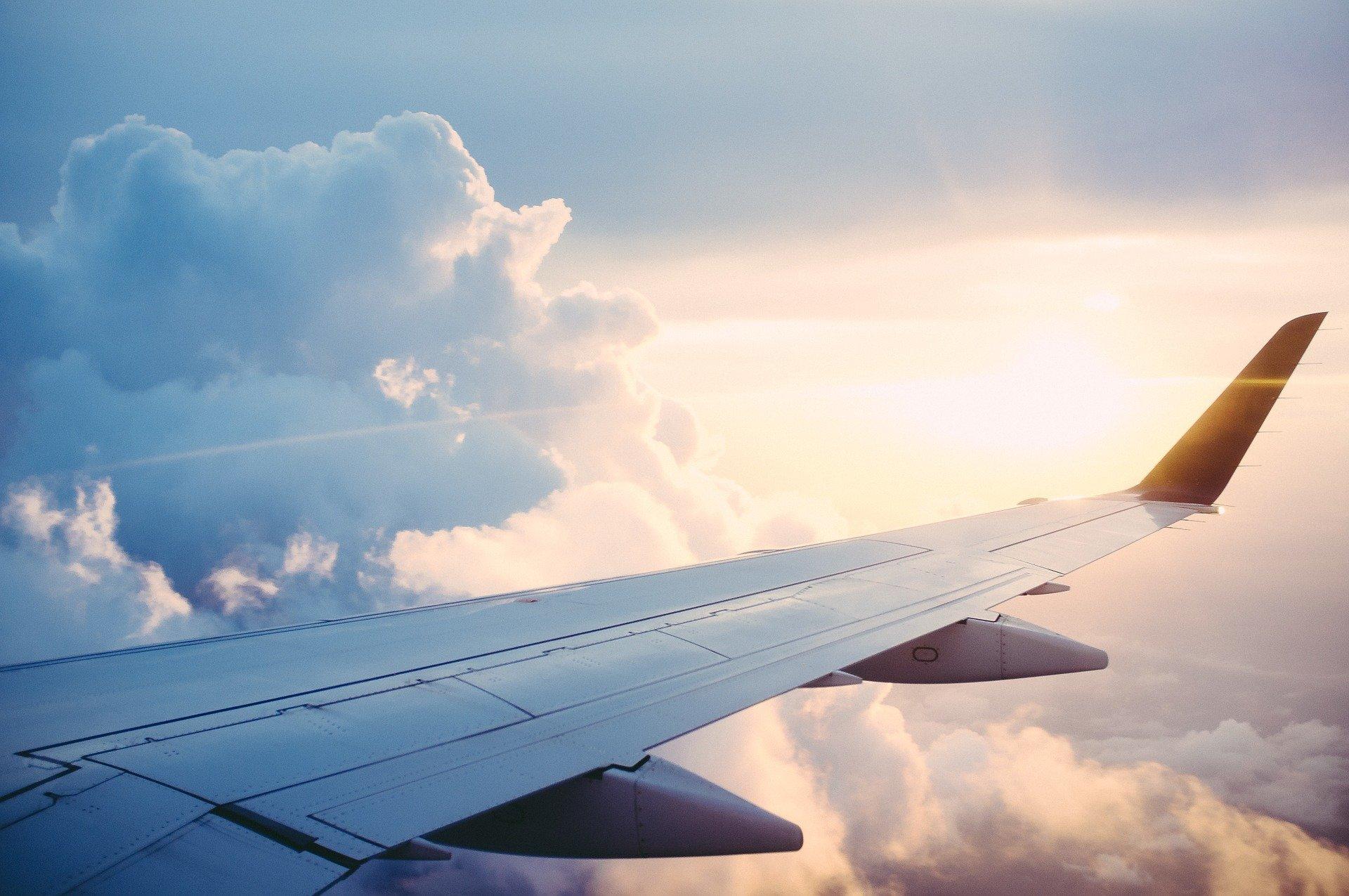 Vinge på et fly