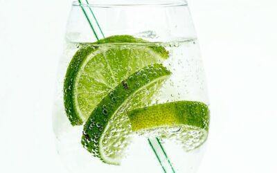 Alt du skal vide om at lave lækre drinks til hverdag og ferie